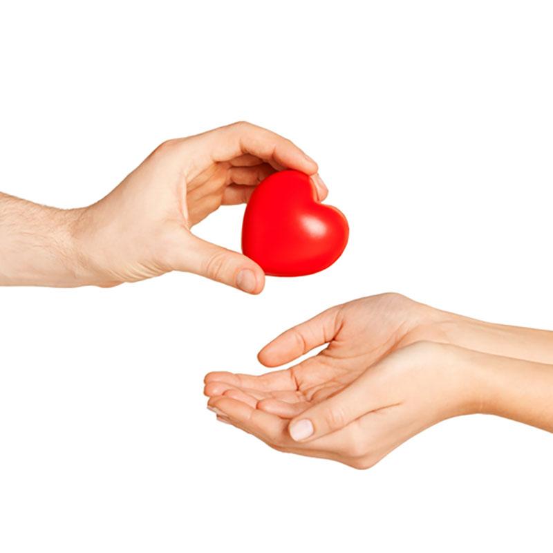 Organ Donation – A Critical Aspect