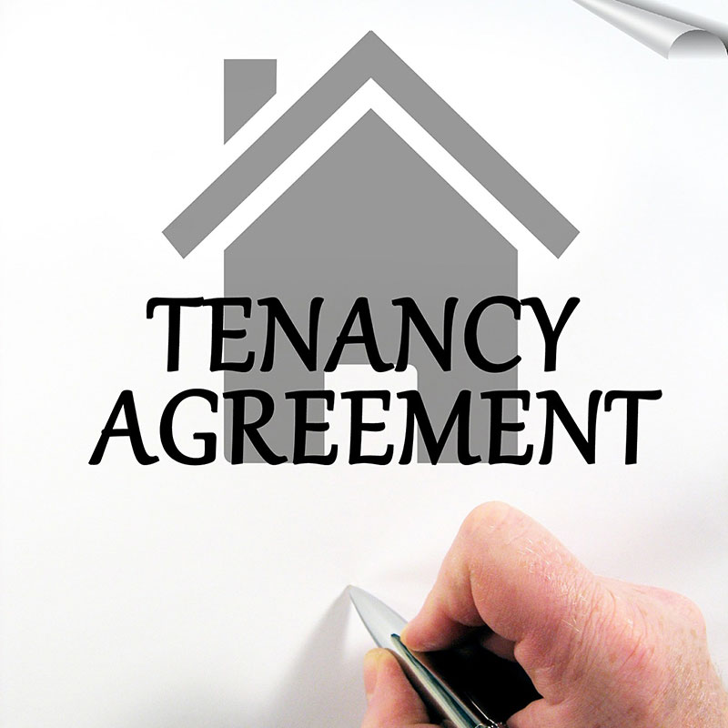 landlord tenant rights